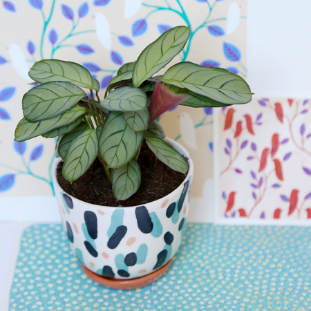 "NEW! Flower pot ""Blue and pink dance""..."