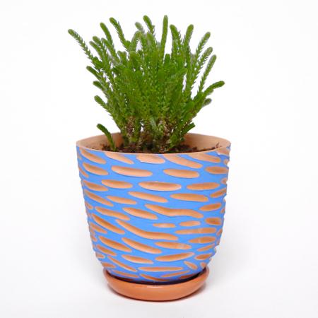 "Pot terracotta ""Vagues bleues"" +..."
