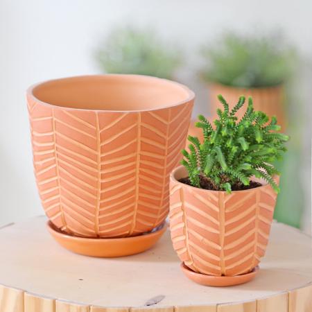 """Grand pot terracotta """"Chevrons"""" +..."""