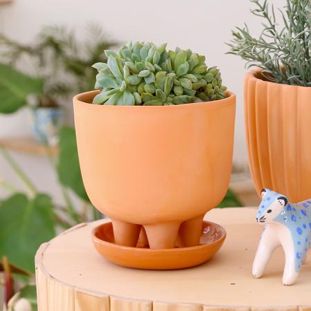 NEW! Terracotta flower pot Zoi +...