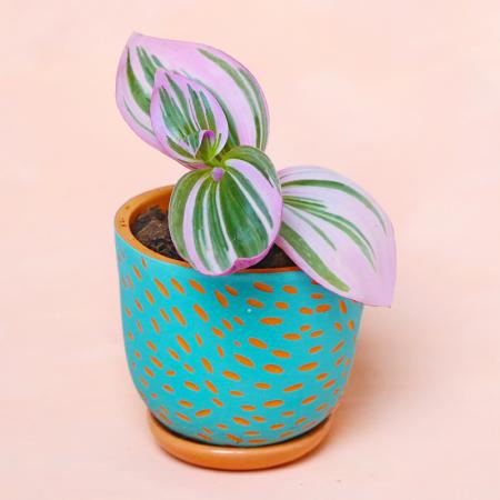 "NEW! Terracotta pot ""Ocean""..."